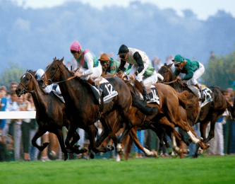 About horse racing form book