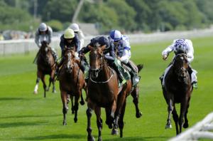 Best Horse Racing Ratings