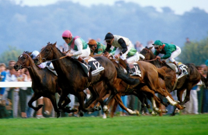 RacingFormBook Horse Racing App